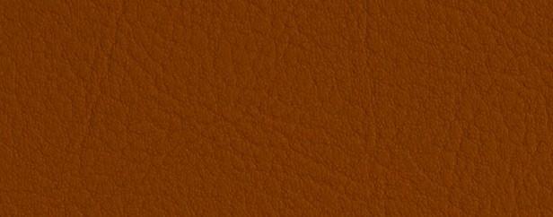 V-Terracotta 0035
